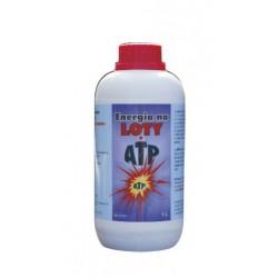 Energia na loty - ATP 1000 ml.