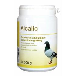 ALCALIC 500 g