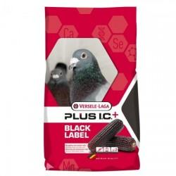 Champion Plus I.C+ BLACK LABEL