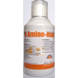 B-Amino Max 300 ml