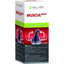 MUSCUL DRINK - NEW 250 ml.