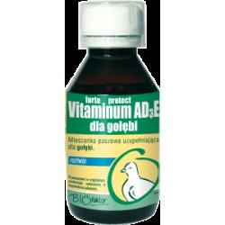 Vitaminum AD3E Protect dla gołębi 100 ml.